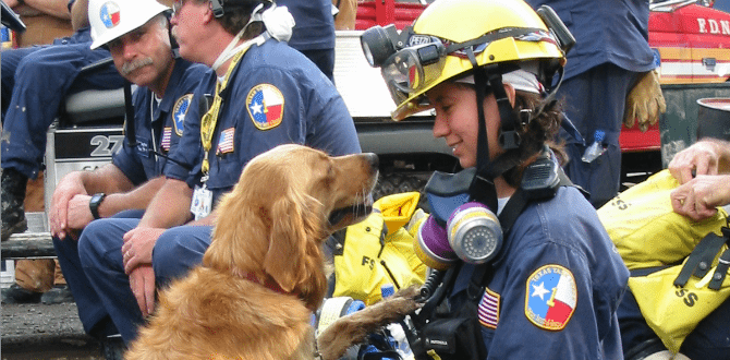Last Known Living Search And Rescue Dog From 9/11 Has Passed