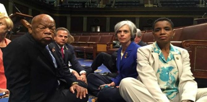 House Democrats Stage Sit-In Over Gun Control