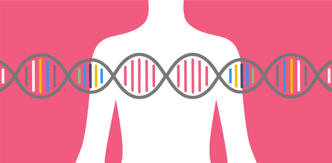 What You Need to Know About The BRCA Gene And Genetic Breast Cancer Screenings