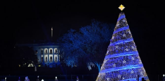 8 Things To Know About The National Christmas Tree Lighting