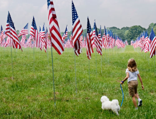 10 Charities To Donate To This Independence Day