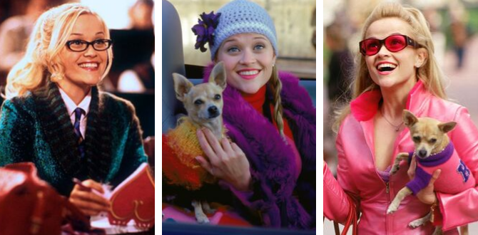 11 Things You Need To Channel Your Inner Elle Woods