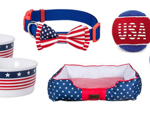 The Best Patriotic Accessories For Your Furry Friend