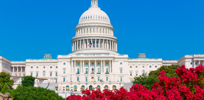 What Does The Congressional Reapportionment Mean For 2022 Midterms? Let's Break It Down